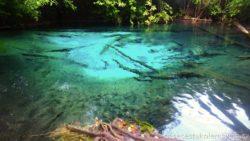 Emerald Pool Krabi Thajsko