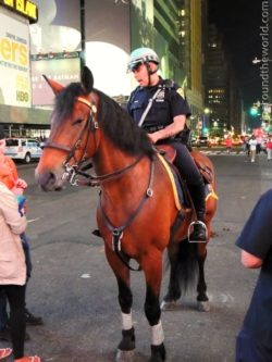 Policista na Times Square
