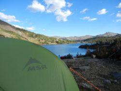 MSR stan v přírodě